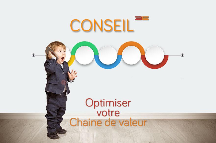 Consulting (Audit, AMOA [ERP, CRM, projet digital sur mesure] pour optimiser processus et chaîne de valeur